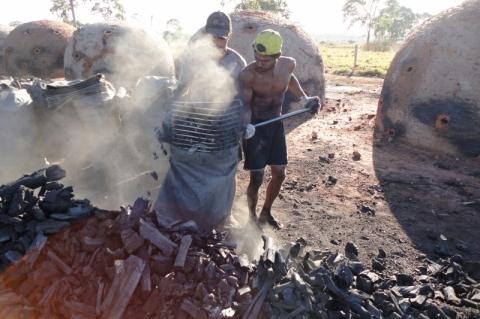 Número de resgates de trabalhadores escravos chegou a 1,1 mil em 2018