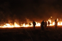 Após incêndio na Chapada, voluntários defendem continuidade de ações preventivas
