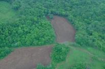 Desmatamento no Bioma da Mata Atlântica na Terra Indígena do Guarita é identificado pelo Comando Ambiental
