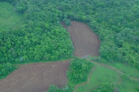 Procuradoria descobre quase 10 mil propriedades rurais em terras indígenas