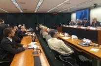 Diferença de custos no Mercosul pauta audiência sobre arroz