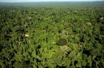 Governo exonera responsável por monitorar Amazônia no Inpe