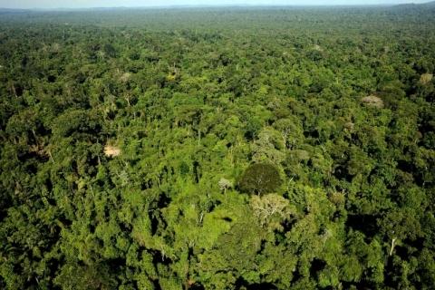 Governo planeja regularizar 100 mil terrenos na Amazônia por sensoriamento remoto
