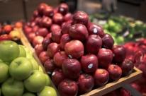 Anvisa quer mais rapidez em avaliação de riscos de agrotóxicos