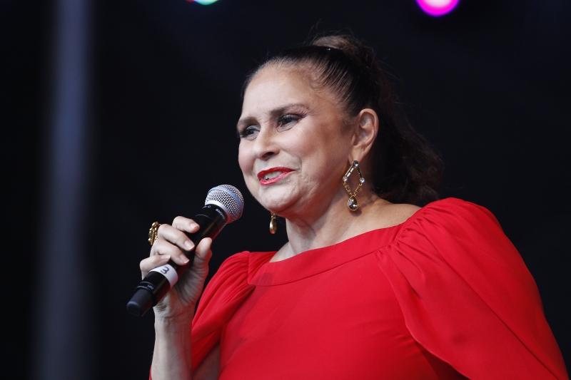 Cantora reparou-se durante dois anos para o projeto
