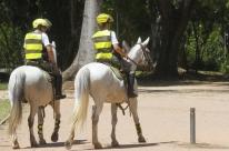 Animais que atuaram na segurança poderão ser adotados por oficiais no Rio Grande do Sul