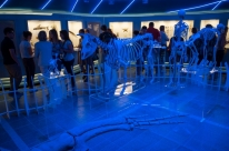 Programa de férias no Museu da PUCRS tem inscrições abertas