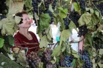 Evento contou com mostra de uvas e de produtos agrícolas