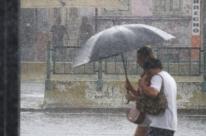Forte chuva derruba árvores e alaga ruas de Porto Alegre