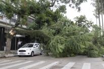 Força de temporal em Porto Alegre lembra supertempestade de 2016