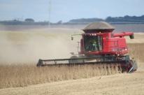 RS deve colher 36,5 milhões de toneladas de grão, afirma Conab