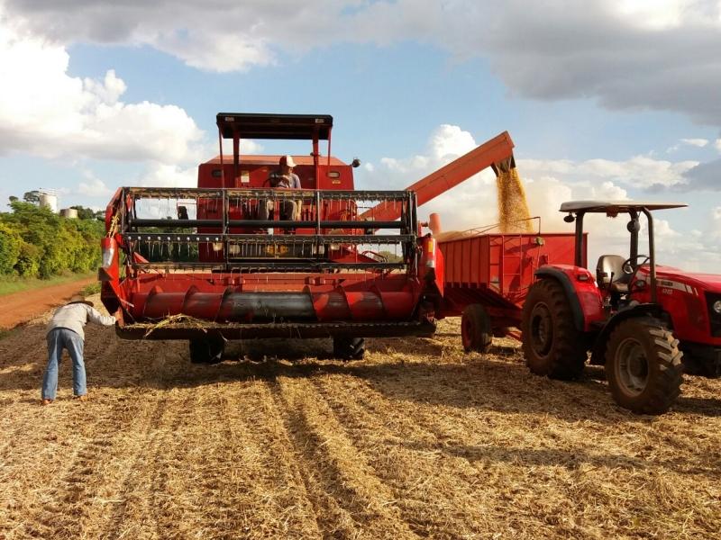 Obra orçada em R$ 12,7 bilhões facilitaria o escoamento da soja