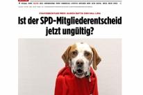 Jornal registra cachorro para votar sobre coalizão do Social-Democrata