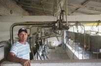 Mecanização da atividade leiteira avança no campo