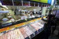 Pescadores comemoram boa safra de pescados
