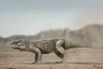 Estudo identifica novo réptil de 230 milhões de anos no Rio Grande do Sul