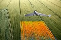Produtores rurais cortam custos com uso de drones