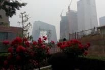 Uma batalha contra a poluição