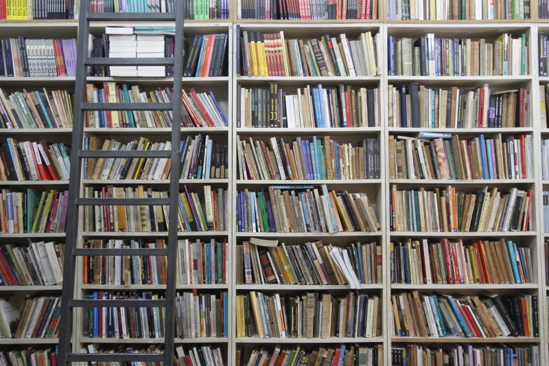 Receio é que os valores para obtenção do ISBN aumentem e impactem no orçamento das editoras