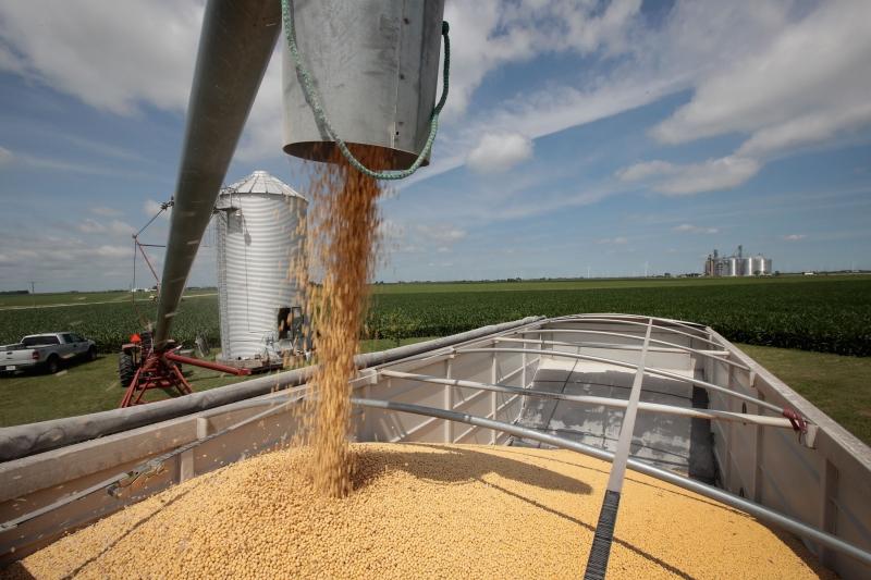 Principal produto da pauta gaúcha, soja corresponde a 80% dos embarques