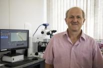 Grupo de pesquisa da Univates descreve 42 novas espécies de ácaros