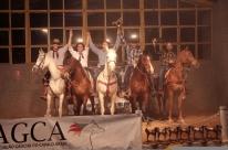 AGCA premia os melhores do cavalo árabe