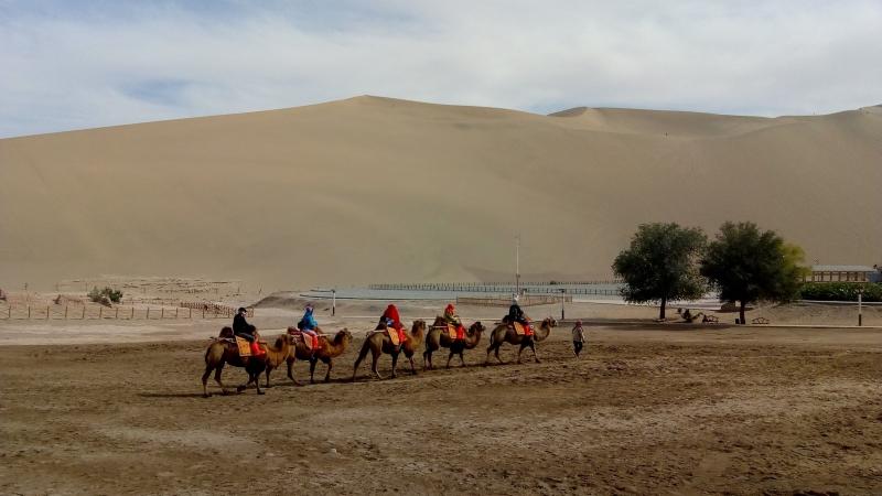 Turistas atravessam o deserto de Gobi em camelos, refazendo o roteiro dos antigos comerciantes