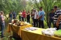 Tarde de campo aborda gestão sustentável da propriedade
