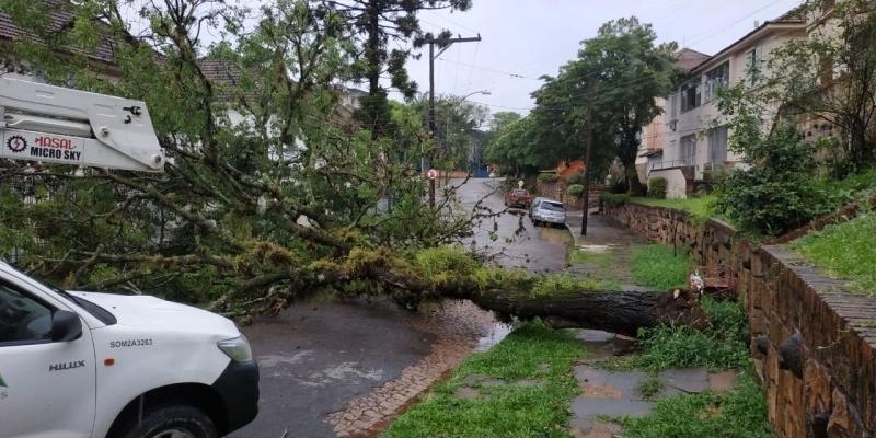 No bairro Passo d'Areira, o trânsito teve bloqueio total em razão da queda de uma árvore