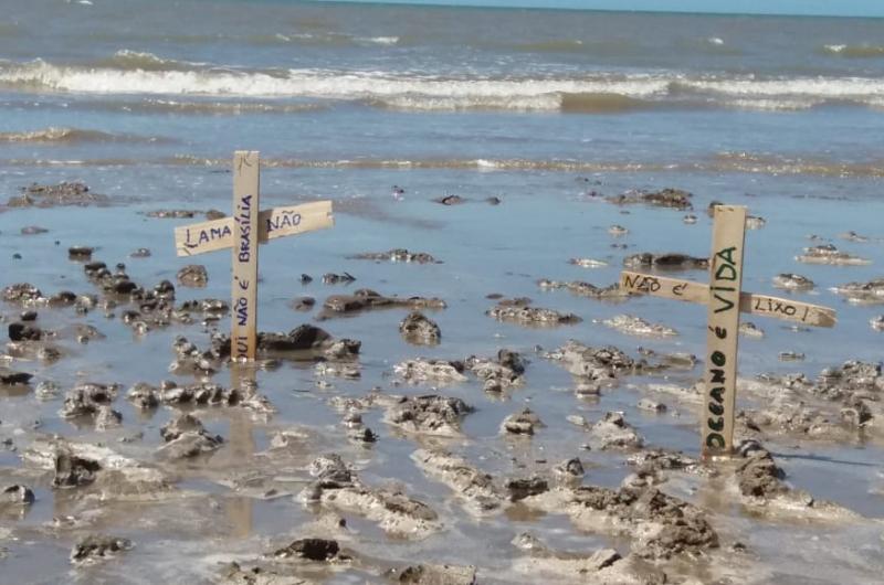 Placas foram colocadas na beira da praia para denunciar fenômeno