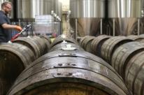 Univates oferece curso Técnico em Cervejaria inédito no Estado a partir de fevereiro