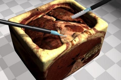 Pesquisadores aprimoram simuladores cirúrgicos