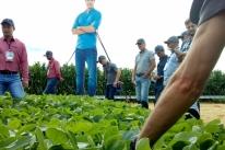 Nova soja transgênica é apresentada no Rio Grande do Sul