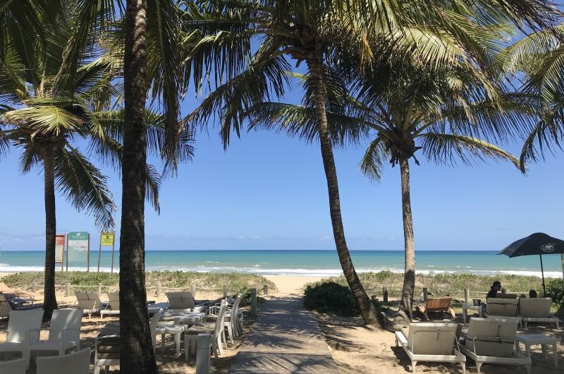 Mar quente e cristalino é contornado pelos tradicionais coqueiros, cenário perfeito para férias tranquilas