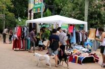 Brechocão destina recursos arrecadados para animais resgatados