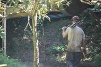 Garimpo é feito de forma sustentável em Ametista do Sul