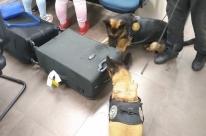 Mãe e filha são presas no Salgado Filho carregando malas com 5kg de droga
