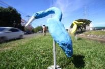 Conjunto de garças coloridas chamam a atenção para os moradores do bairro Ilhota