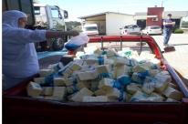 Fiscais estaduais agropecuários apreendem 7,7 toneladas de produtos lácteos