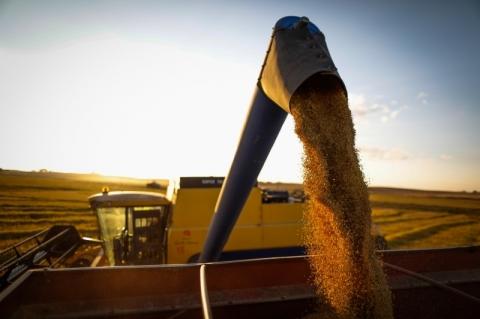 Valor da Produção Agropecuária de 2020 é estimado em R$ 848,6 bilhões