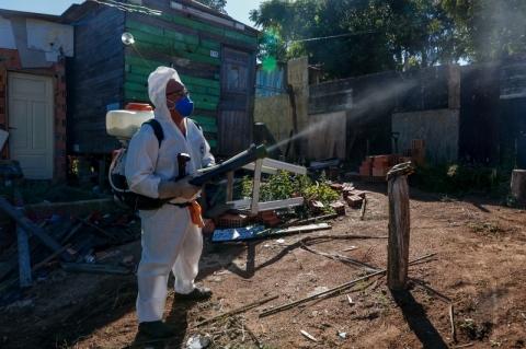 Porto Alegre tem status de 'alerta' para infestação de Aedes Aegypti