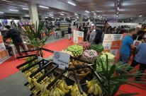 Vendas nos supermercados crescem 6,39% em novembro na comparação anual