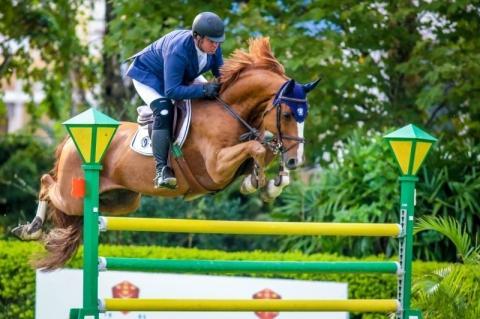 O cavalo alado