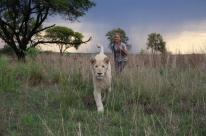 Em 'A menina e o Leão', família deixa Londres para administrar fazenda de leões na África