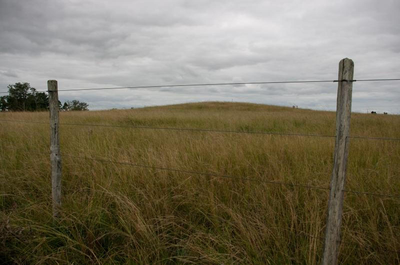 Expedição localizou três cerritos nas proximidades do banhado do Inhatium, interior de São Gabriel
