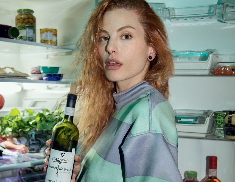 Ibravin quer ampliar o consumo do vinho entre os jovens
