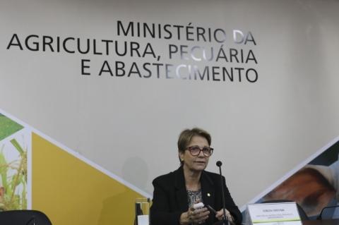 Brasil tenta habilitar 30 novos frigoríficos para exportação de carne para a China