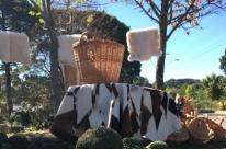 Festa exalta diversidade do pinhão na culinária