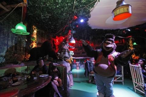 Pizzaria de Gramado recria ambiente de floresta