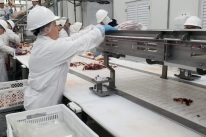 Frigorífico em Venâncio Aires é interditado por riscos a trabalhadores